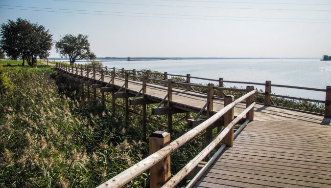 Lieliska vieta nesteidzīgai pastaigai – Liepājas ezera Zirgu salas taka