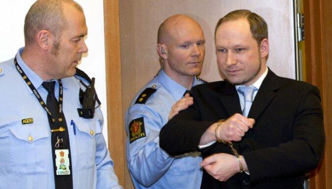 Норвежские ультраправые поддержали взгляды Брейвика