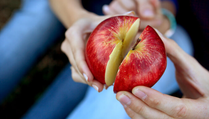 Школьникам будут бесплатно выдавать молоко и фрукты по единой программе