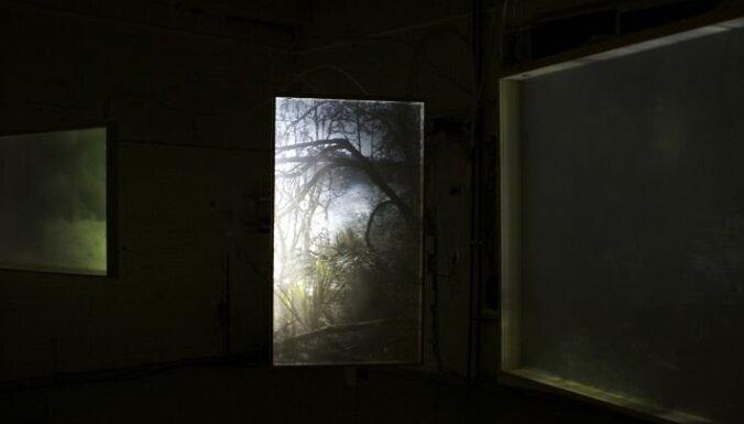 Purvīša balvai 2013 izvirzīti pieci jauni mākslas notikumi