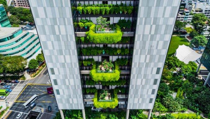 Neparasta pieczvaigžņu viesnīca Singapūrā, kas izveidota kā dārzs