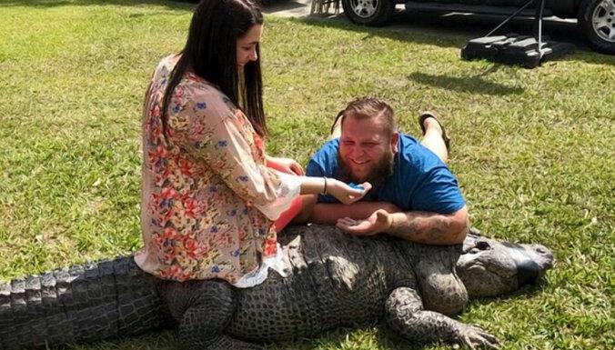 """""""Я сразу подумал: тут нужен аллигатор"""". Как мир захватила мода на разрушительные вечеринки"""