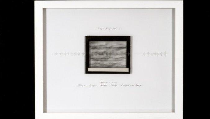 LLMC Ofisa galerijā atklās Kalles Lāra izstādi 'Skaņas noslēpumi. Binaurālā klusā daba'