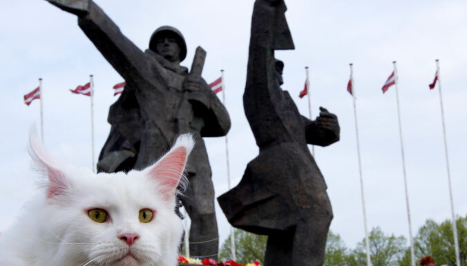 Amsterdamā izrādīs dāņa uzņemtu īsfilmu par to, kā kaķi redz Rīgu