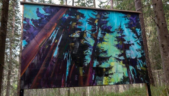 ФОТО. Природная тропа Риекстукална: Картинная галерея под открытым небом