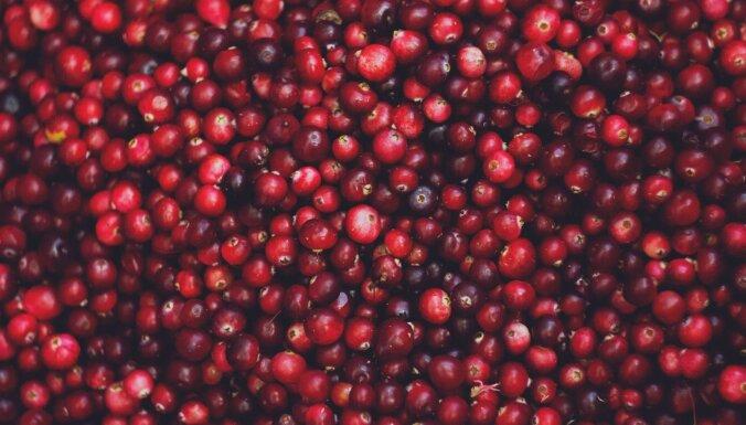 Оборот латвийского переработчика ягод Very Berry снизился на 19%