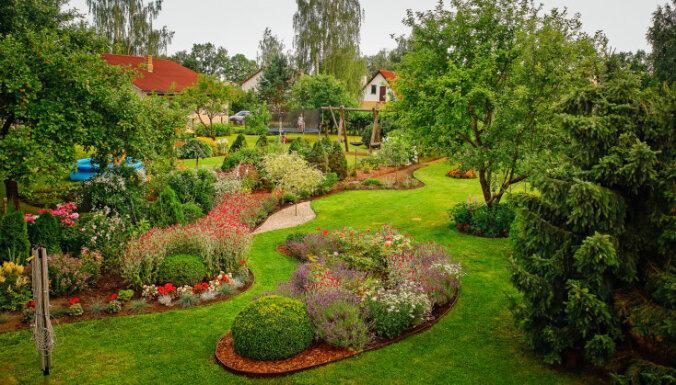 Pieci dārzi Latvijā, kas 2020. gadā visvairāk patikuši 'Tavs Dārzs' lasītājiem