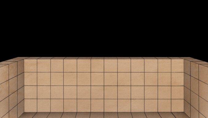 Galerijā 'Look!' atklās Jāņa Šneidera personālizstādi 'Ibidem'