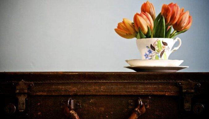Ziedošā tulpju daile interjerā – idejas, ko nošpikot savam ...