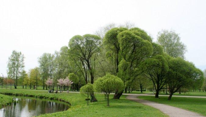Lietuviešu uzņēmums ieguvis tiesības Uzvaras parkā būvēt panorāmas ratu