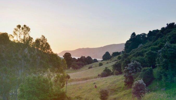 Sniegotas virsotnes un mežonīgas upes: kā Laima un Rihards ar vienvirziena biļeti uz Jaunzēlandi devās