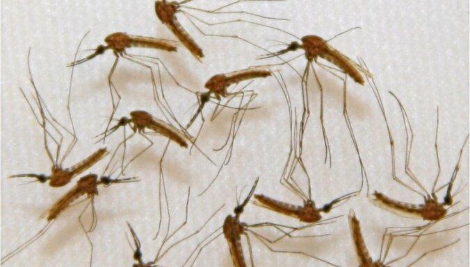Ученые: традиционное лечение малярии становится неэффективным
