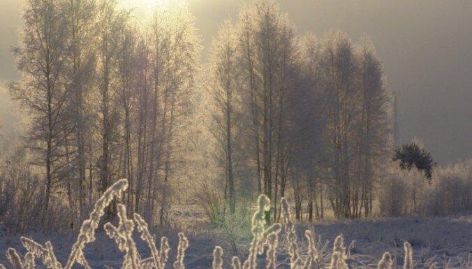 Синоптики: новый год начнется с морозов