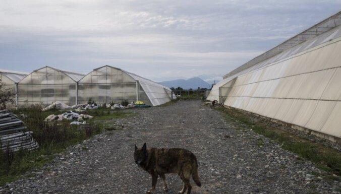Atlūzas: 'Strādāt Abhāzijā – tas nav prestiži'