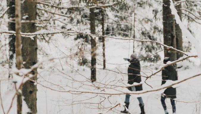 Piedzīvojums ar haskijiem vai pastaiga dabas takā: idejas atpūtai Amatas pusē