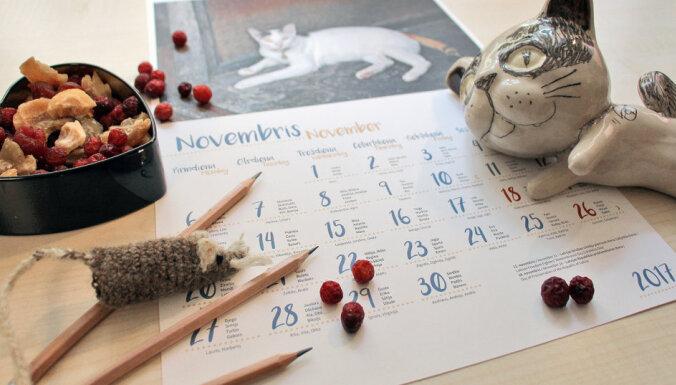 Katram pa vārda dienai! Zane Ernštreite un viņas īpašais kaķu kalendārs