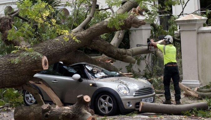 Буря в Великобритании: 100 тысяч домов без электричества
