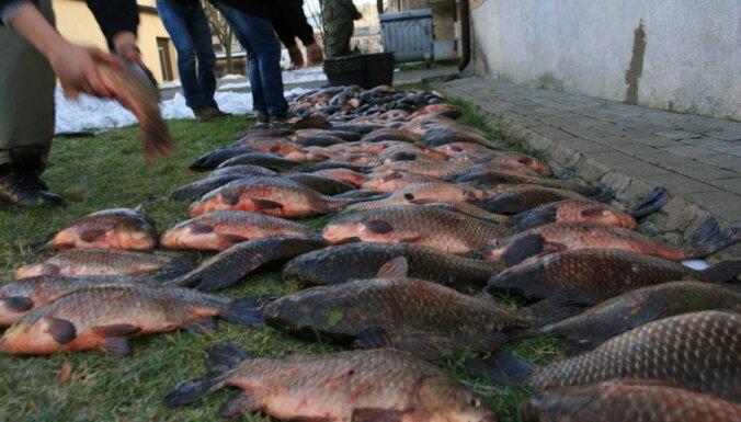 На озере Бабитес задержаны браконьеры с крупнейшим за 10 лет уловом