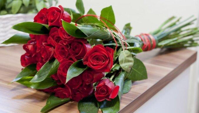 В Санкт-Петербурге уничтожат зараженные трипсом розы из Латвии