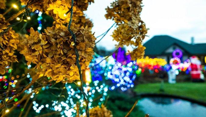 Ciemos: 30 tūkstoši lampiņu un Grinčs – slavenais Pārdaugavas privātnams svētku rotā