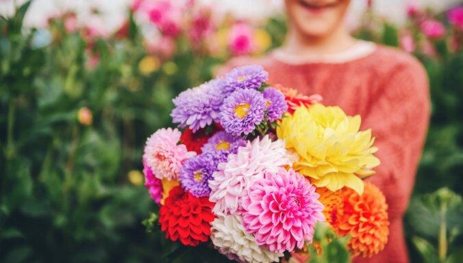 Rudens vāzē: floristu ieteikumi, kā ilgāk saglabāt skaistos ziedus