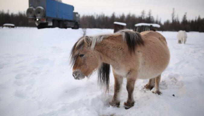 Foto: Kā ļaudis dzīvo spelgonī pasaules aukstākajā ciemā Oimjakonā