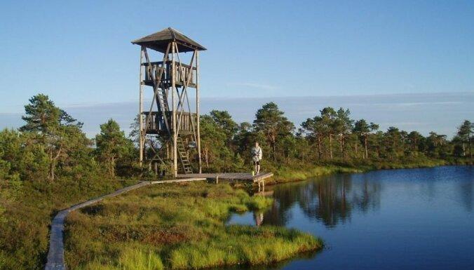 Pavasaris Igaunijā: dabas takas, pilis un salas