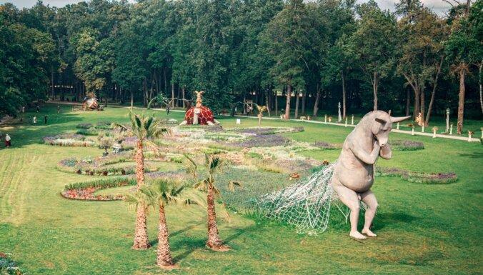 Eksotikas deva Lietuvā – desmit metrus augstas palmas Pakrojas muižā