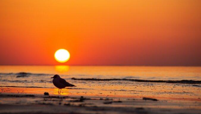 Великолепные ФОТО: Золотой час на пляже в Майори