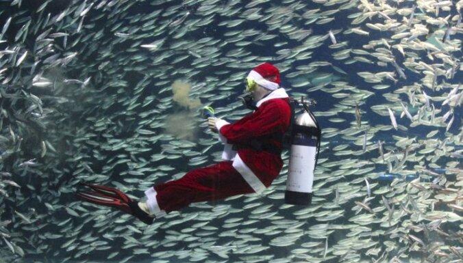 Фоторепортаж: как в мире ждут Рождество