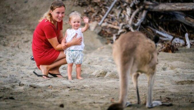 Для сильных духом: автомобильное путешествие по Австралии с маленьким ребенком