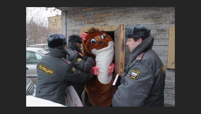 Cehs.lv: 1. aprīlis Latvijā ir sēru diena