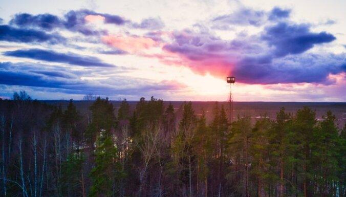 Foto: Kristakrūga skatu tornis, no kura var lūkoties uz Teiču dabas rezervātu