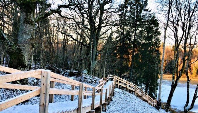 ФОТО: Благоустроенная гора Волзбах, на которой сделана красивая тропа для прогулок