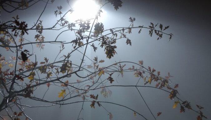 Piektdien Latvijā gaidāma saule un īslaicīgi nokrišņi