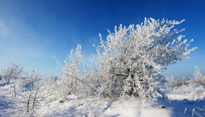 Sinoptiķis: ziema ar - 20 grādu salu var atnākt februārī; vasarā iespējami pat tropiski laika apstākļi