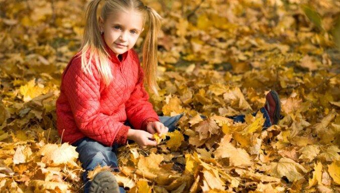 Фенолог: в этом году ожидается ранняя осень