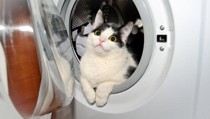 Veļasmašīnas durvis aizvērtas tikai mazgāšanas laikā – kāpēc?