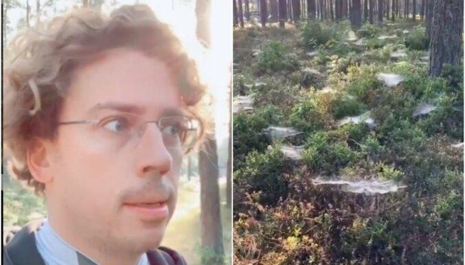 Komisks video: Galkins mežā Bulduros uzgājis citplanētiešu pēdas