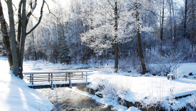 17 января: морозы в Латгалии, Жданок критикует ЕС, Mego покупает Iki