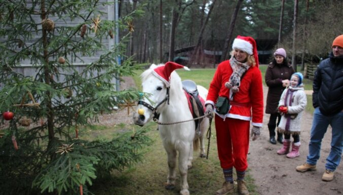 Синоптики обещают Рождество без осадков