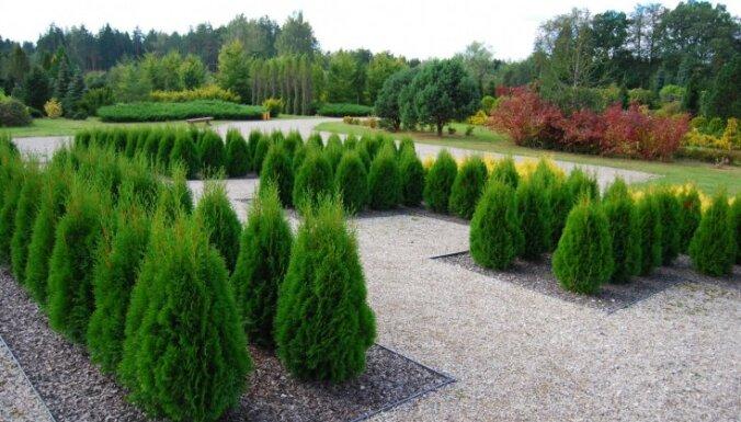 Desmit skaisti dārzi Latvijā, kas noteikti jāapskata šajā vasarā