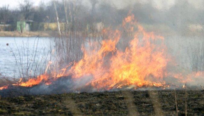 В Латвии массово жгут старник: в пятницу трава горела на площади 32 га