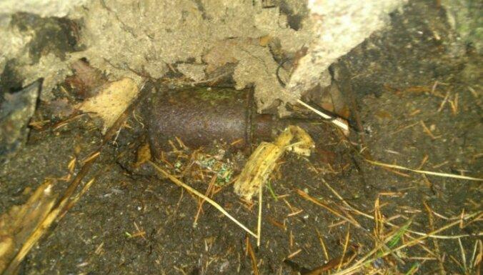 Неподалеку от границы с Россией в дереве нашли гранату