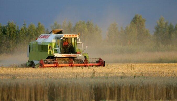 2019. gadā iegūta Latvijas vēsturē lielākā graudu kopraža