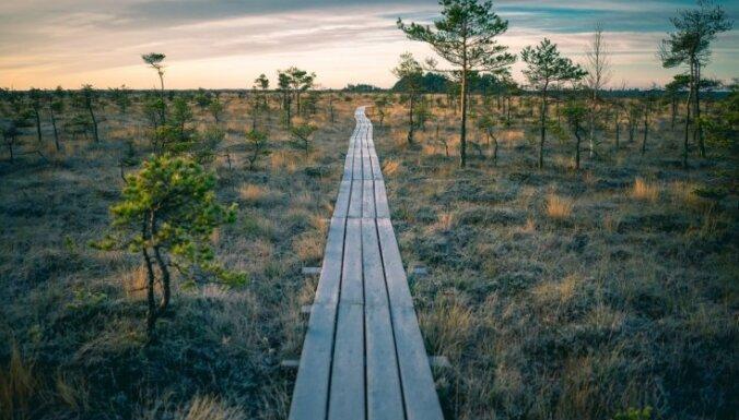 Dabas takas, avoti un ūdenskritumi: 17 pavasara idejas, kā baudīt gadalaiku maiņu
