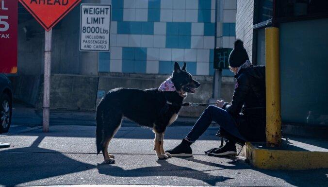 Covid-19: Ķīnas pilsēta aizliedz suņu un kaķu ēšanu