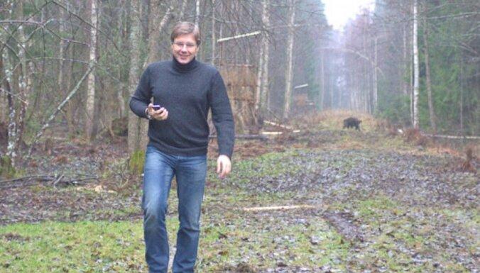 Как Ушаков, выбирая ели для Риги, чуть с кабанами не сфотографировался