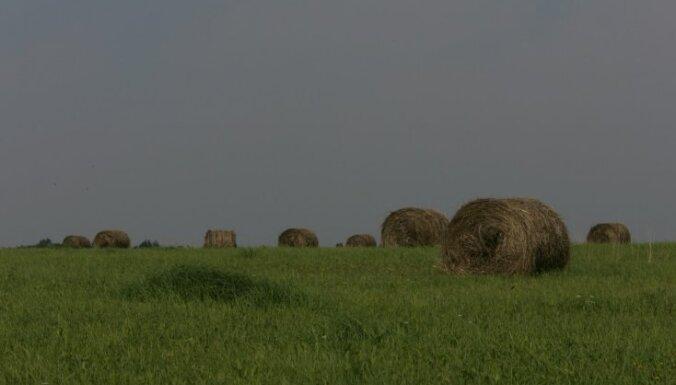 Первый день августа по всей Латвии будет облачным