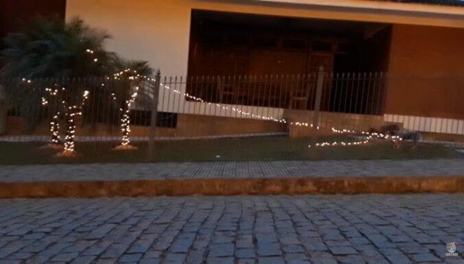 Video: Suns pretojas Ziemassvētkiem un sabojā lampiņu virteni